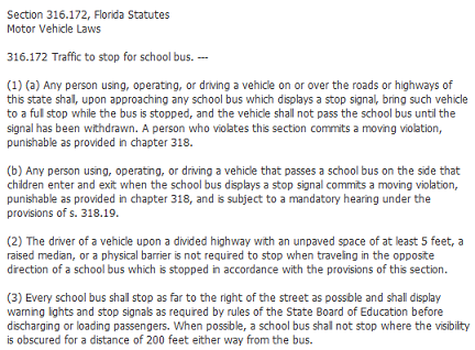 Florida Statute Traffic for School Bus